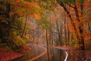 Máme tu podzim…